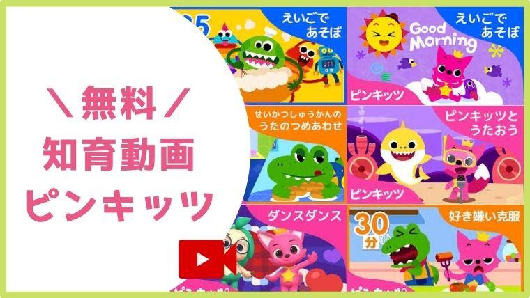 ピンキッツ動画